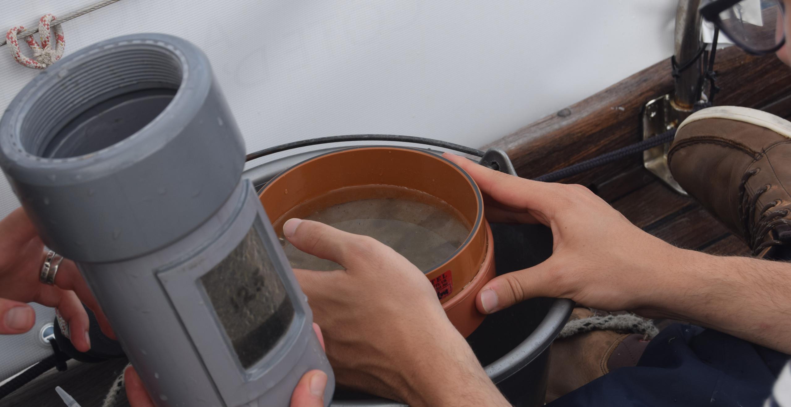 Filtrage avec un tamis des microplastiques récupérés avec le filet manta