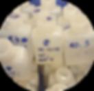 Conservation des échantillons microplastiques récoltés lors d'une campagne scientifique d'étude des microplastiqes