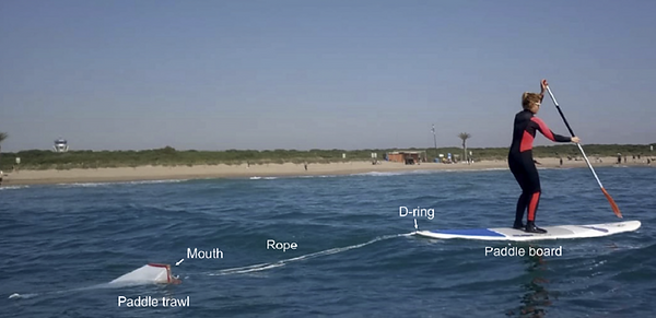 Paddle surfing to sample miroplastic in beach water areas near Barcelona