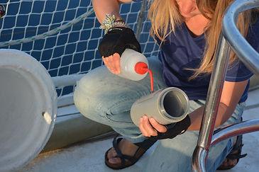 Rinçage du tamis après échantillonnage du microplastique à l'aide d'un filet Manta ou fermant sur le pont d'un voilier
