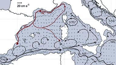 Carte du courant nord méditerranéen et son influence sur la répartition de  la pollution plastique
