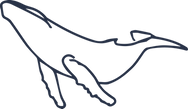 Icone de baleine à bosse