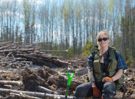 Meet the 'Industrial Athletes' who Replant Alberta's Forests