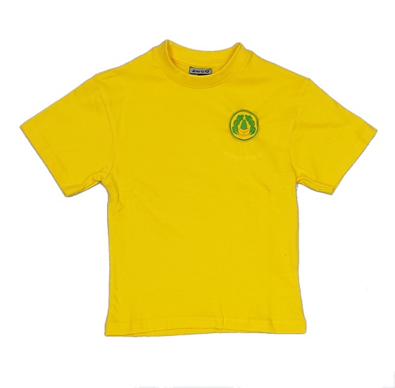 David Livingstone P.E T-shirt