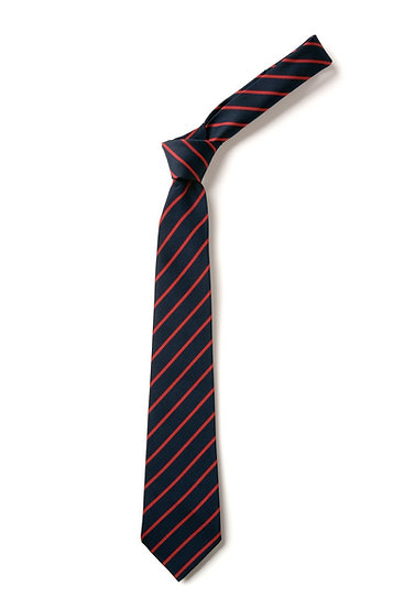 Paxton Academy Tie
