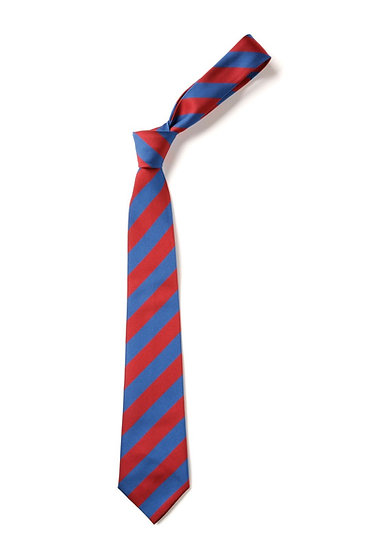 Orchard Park school tie