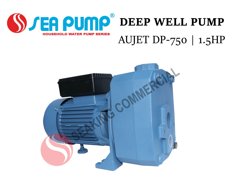 Deep Well Pump | AUJET DP-750