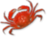 Bayou bills real crab.png