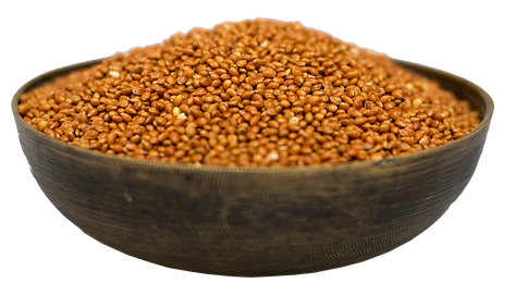 millet brun graines.png