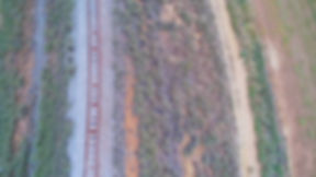 old train line.jpg
