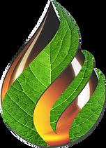 logo leaf drop