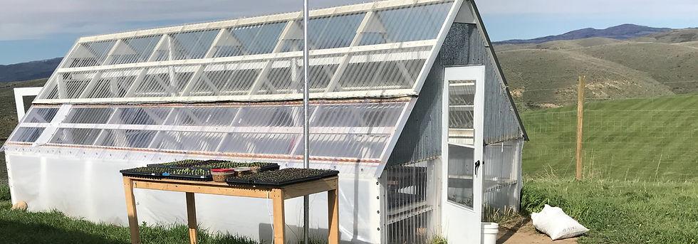 mbf-greenhouse.jpg