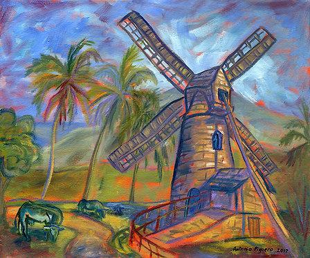 Morgan Lewis Wind Mill, Barbados