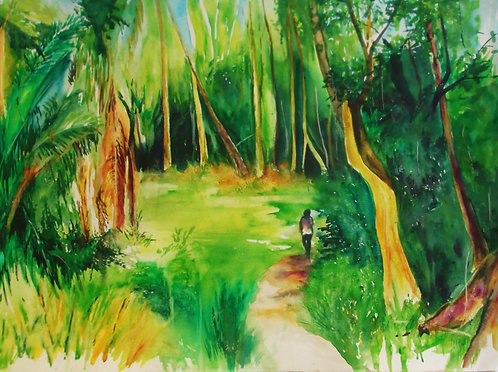 Forest Walk (Fishing Pond)