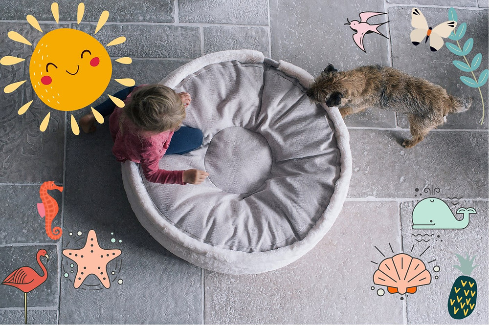 orthopädisches Hundebett Hyggebed www.hyggebed.de für große und kleine Hunde
