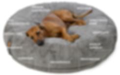 Orthopädisches Hundebett Hundekissen Hyggebed Die Anatomie des Hyggebed