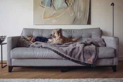 Hyggebed orthopädisches Hundebett Hundebett XXL