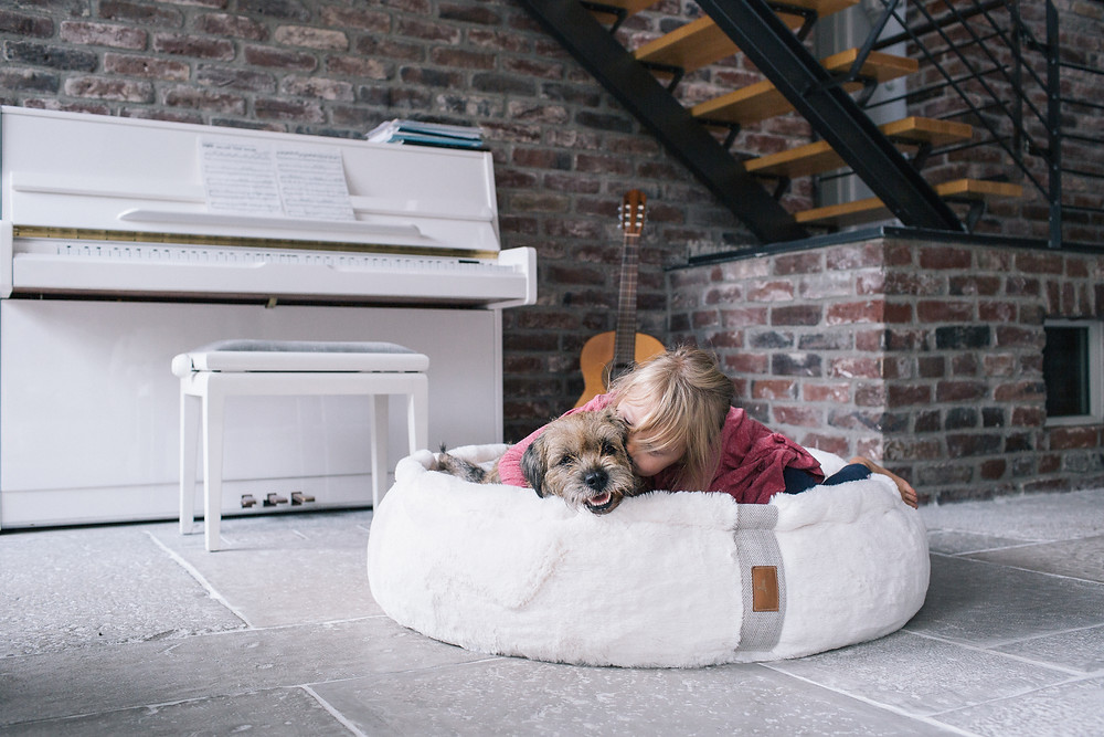 Hyggebed orthopädisches Hundebett Kuscheln