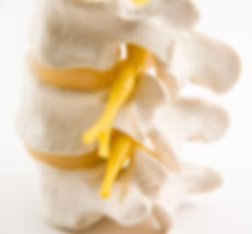 Osteopathy, spine, vertebrae, sciatic nerve