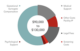 A pie chart showing costs of IVF, surogate fees, and other costs associated with these fertiliity routes.