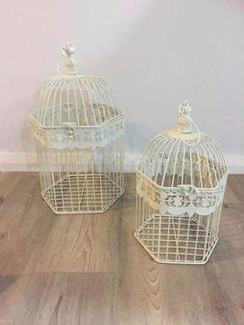 Bird Cage Wishing Well.jpg