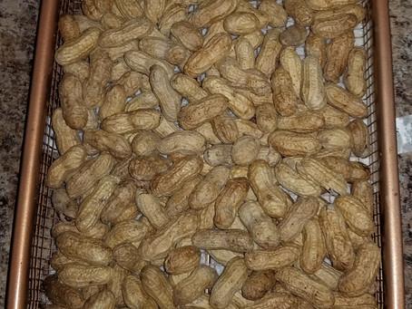 I Had so Much Fun Roasting Peanuts