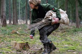 Wir pflanzen den Klimawald: Gemeinsam machen wir uns auf den Weg, um gleichalte Nadelbaumbestände in mehrschichtige Mischwälder mit vielen verschiedenen Baumarten umzugestalten. Wir wollen so dem Wald helfen, dem Klimwandel besser begegnen zu können.
