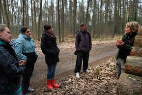 Was erzählt uns die Schnittfläche eines Stammes über ein Baumleben (hier: Eiche)? Und auch hier wieder: Wonach riecht das Holz und warum?