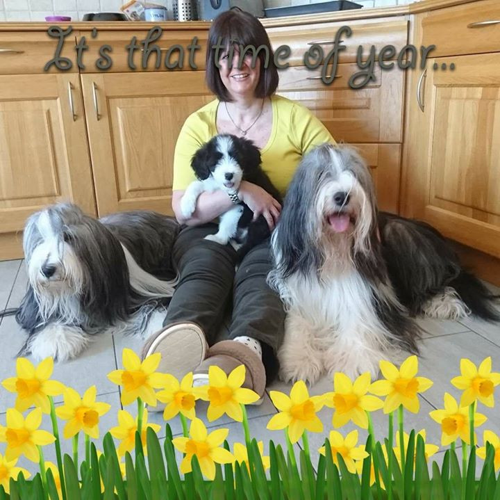 Happy Easter from Daffodil  House