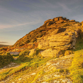 Wild Dartmoor