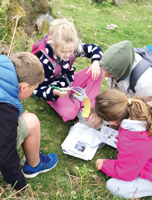 Letterboxing - Fun for Everyone!