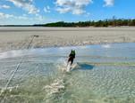 Miss Amelia on the sandbar