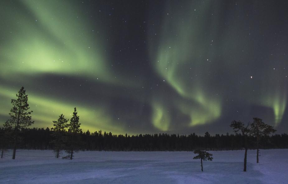 Nordlichter über dem Campsee