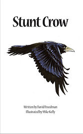 Crow story book