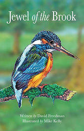 Book about a kingfisher. Story poem for children and adults