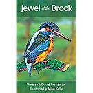 Illustrated story book about a kingfisher