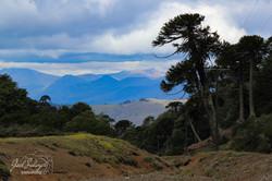 Fotografía de Viajes  Lonquimay