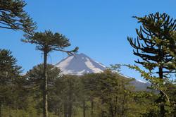Fotografía de Viajes Volcan Lalin