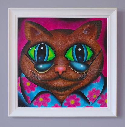 Miami Cat