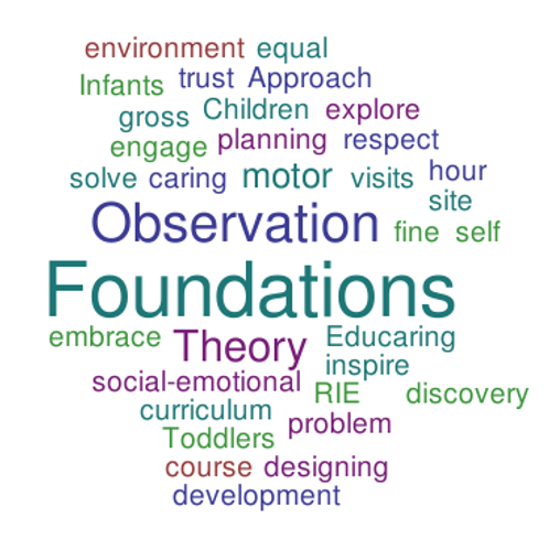 2020 Fall RIE® FOUNDATIONS: Theory and Observations