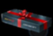 BACHAR_Coaching Gift.png