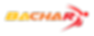 Logo Trasparent.png