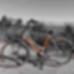 bike rental plymouth.png