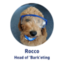 Rocco Head of Barketing.png