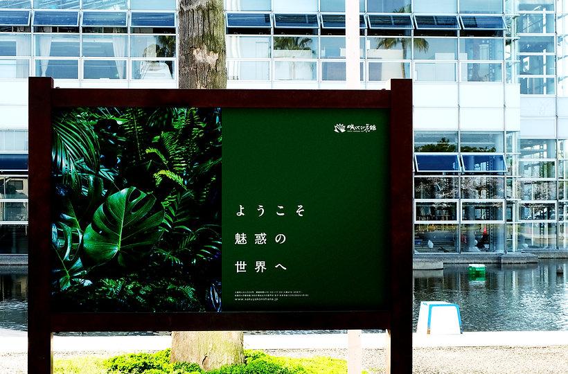 sakuya_05.jpg