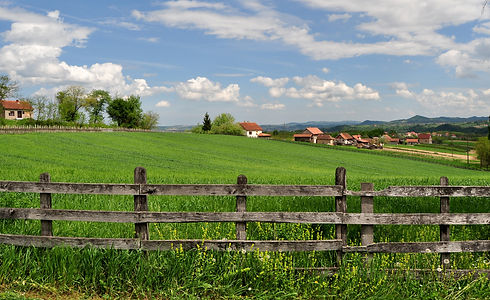 Countryside landscape with lush green gr