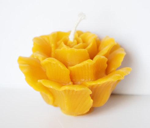 Bougie - Rose