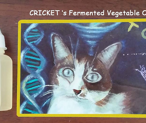 Cricket's Fermented Vegetable Oil