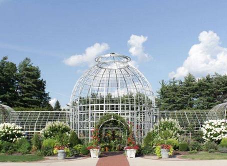 Music & Art in The Gardens 2020