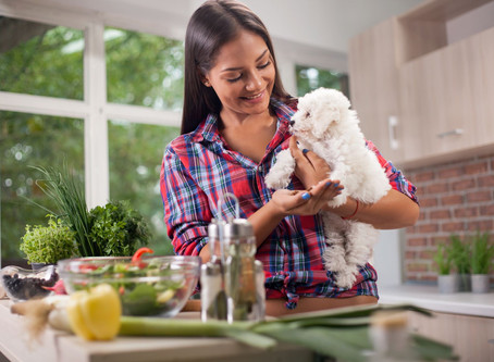 Why home cook for your pets?
